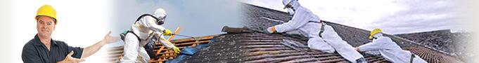 décontamination toiture Rennes